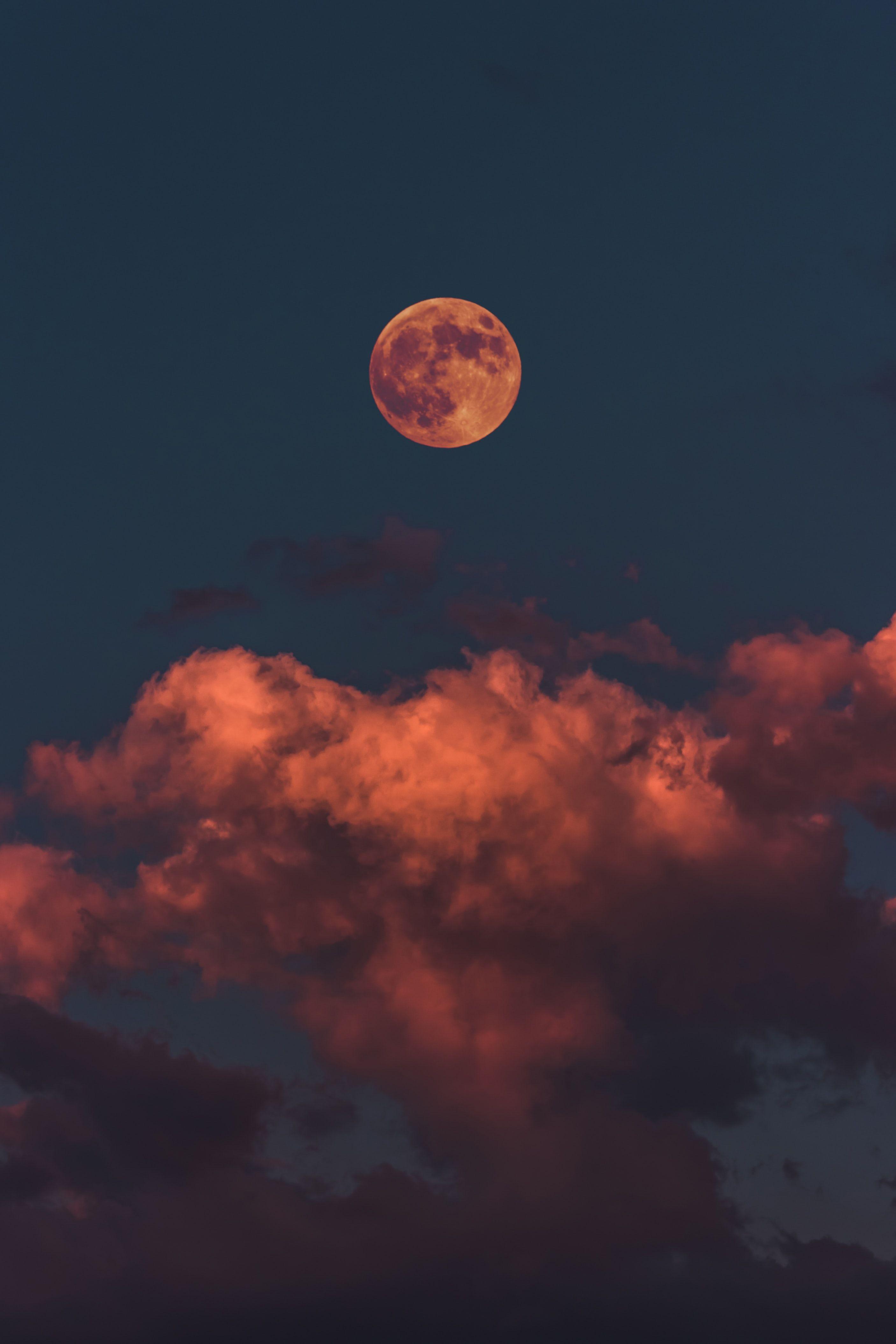 Full Moon Wallpapers   21k, HD Full Moon Backgrounds on WallpaperBat
