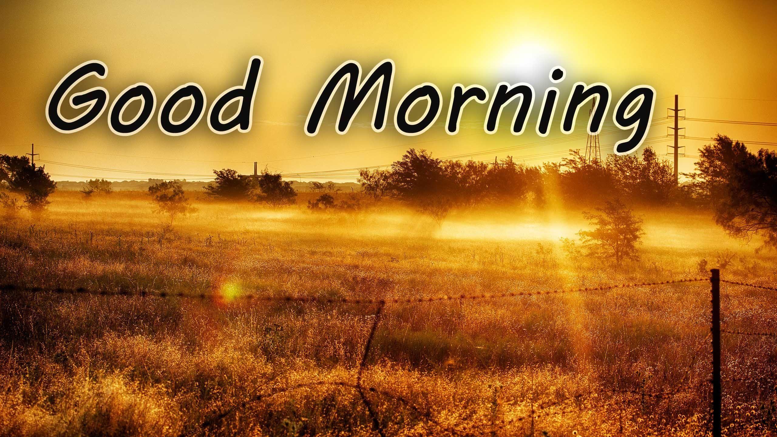 Good Morning Sunrise Wallpapers 4k Hd Good Morning Sunrise Backgrounds On Wallpaperbat
