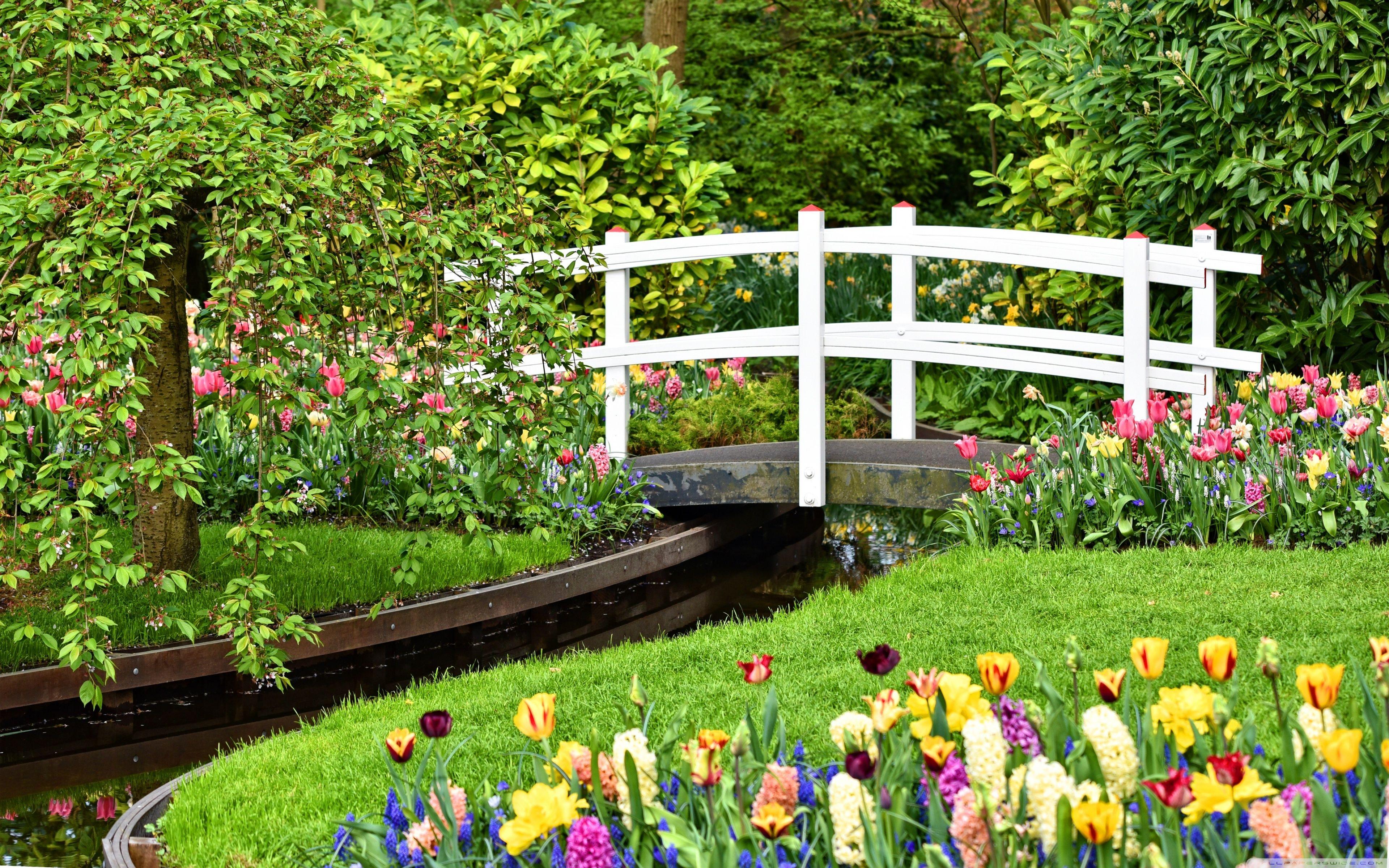Spring Flower Garden Wallpapers - 4k ...