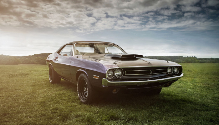 Dodge Muscle Car Wallpaper
